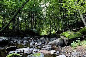 Åbjär Naturreservat